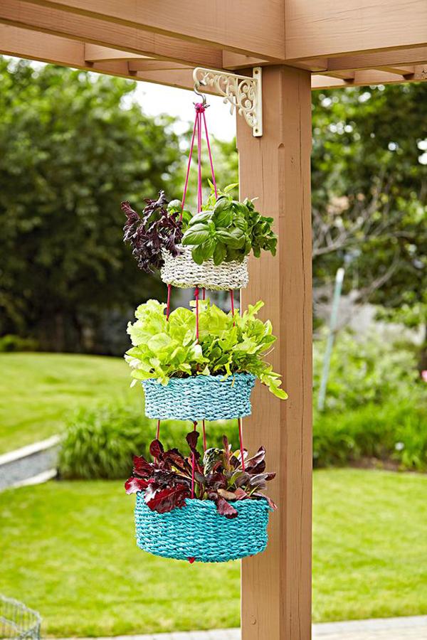 Basket-hanging-plants