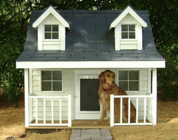 Buldog-house