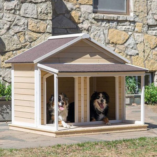 Dog-cottage-with-two-rooms