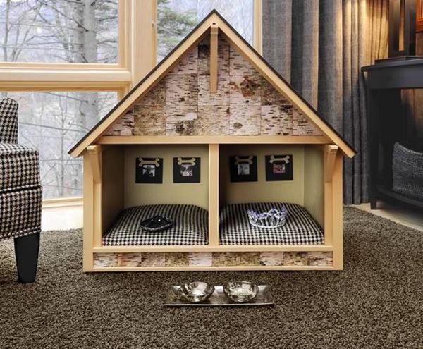 Dream-dog-house