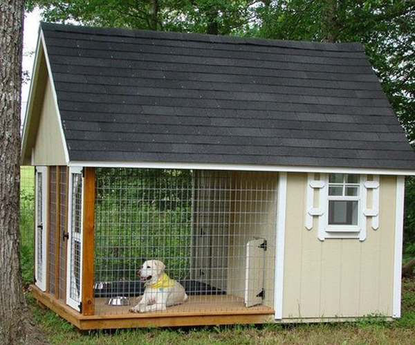 The-kennel-on-the-back-yard