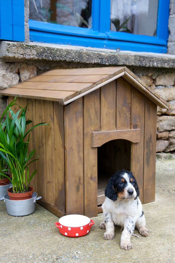 Wooden-mini-kennel-for-your-cutie-dog