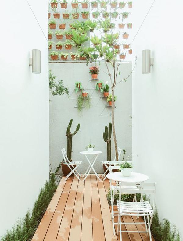vertical-garden-in-the-back-hallway