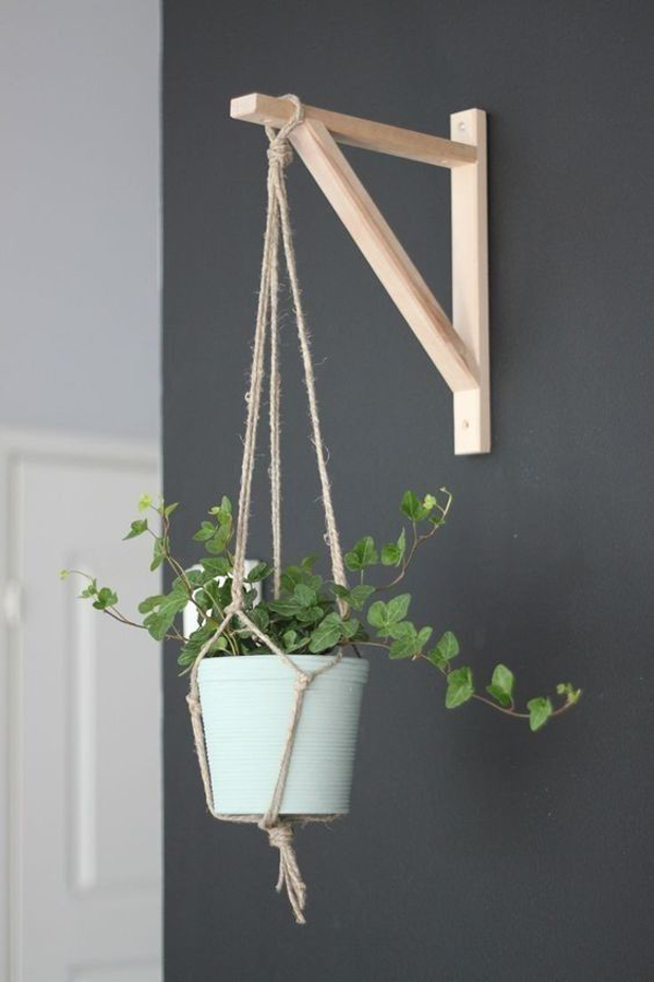 hanging-plant-on-the-wall