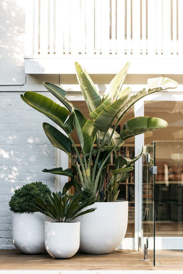 terrace-white-house-cfeative-design