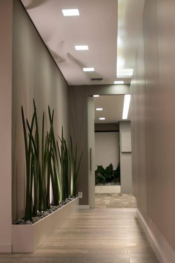 vertical-garden-halway-decoration