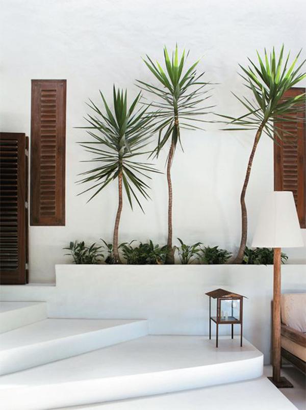 white-theme-of-plants