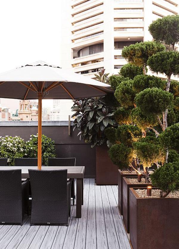 Luxury-rooftop-design