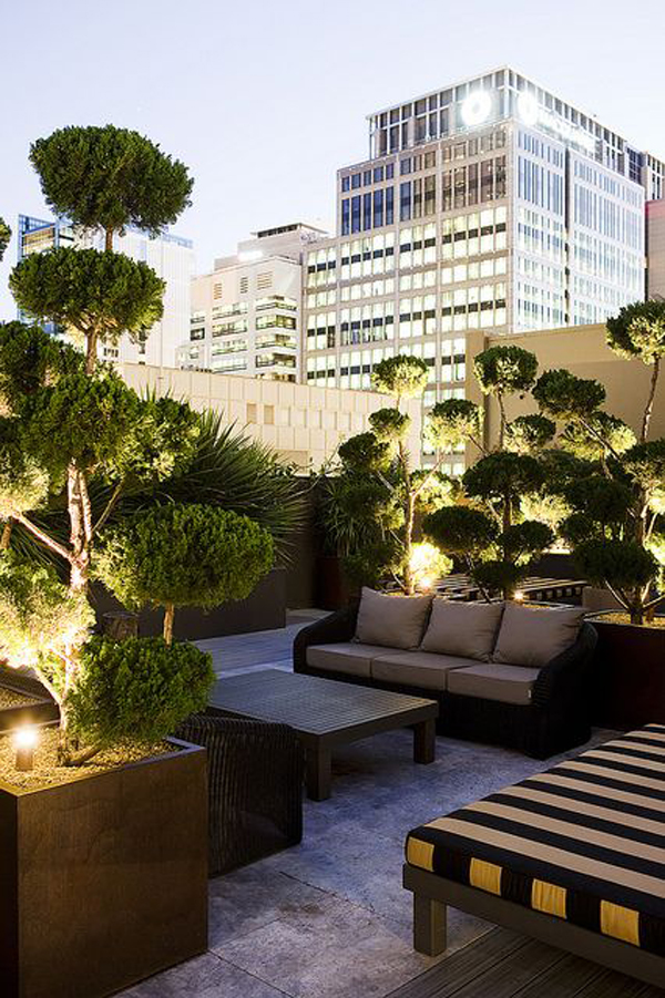 Rooftop-with-bonsai-decoration