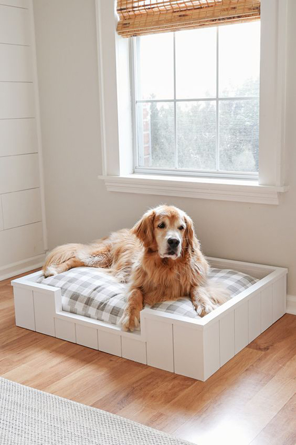dog-bed-with-shiplap