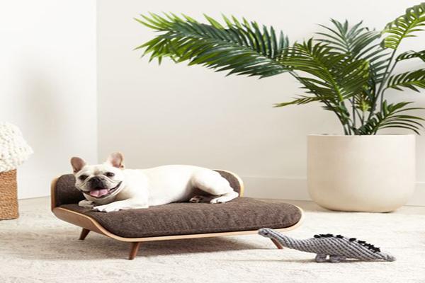 mid-century-modern-dog-bed