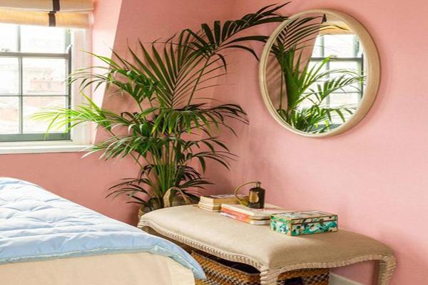 pink-walls-color copy