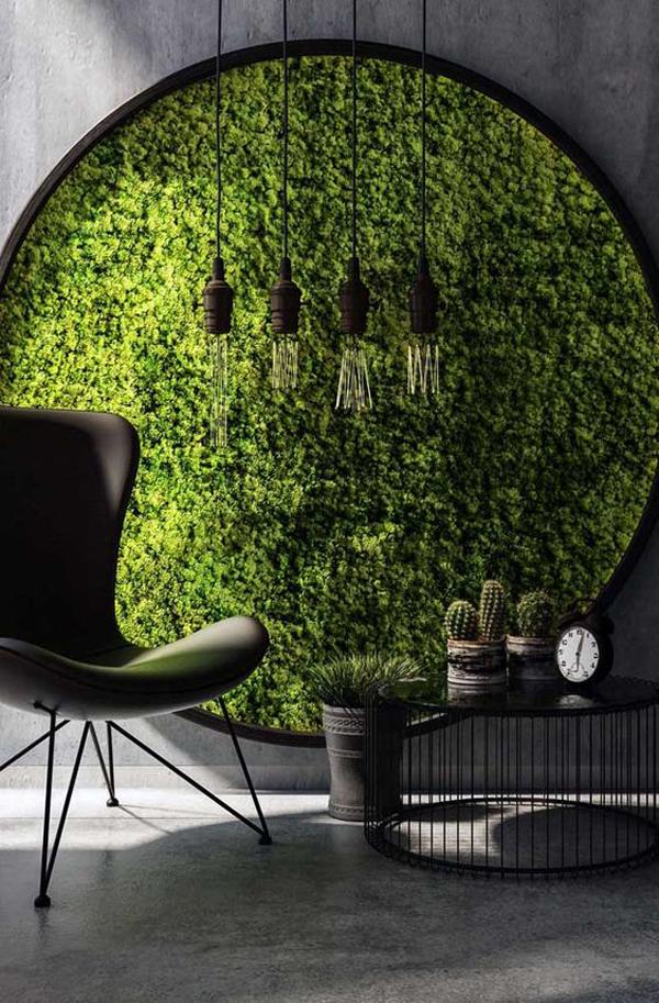 A-circle-wall-plant