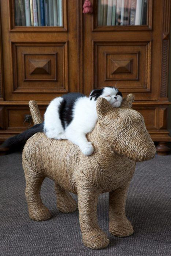 Animal-furniture-for-cat-toys
