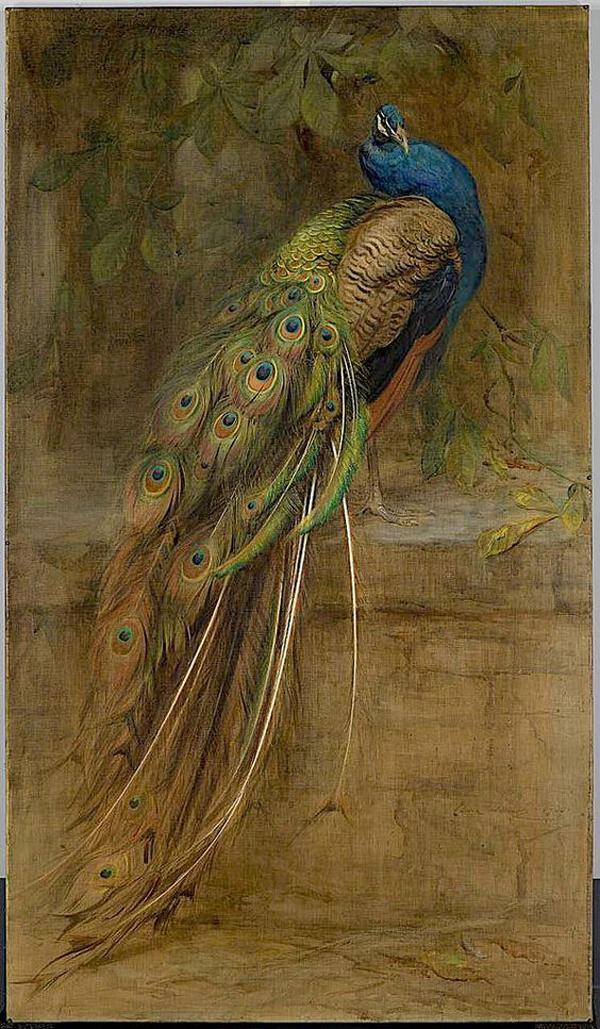 Bird-mural-by-Edwin-John-Alexander