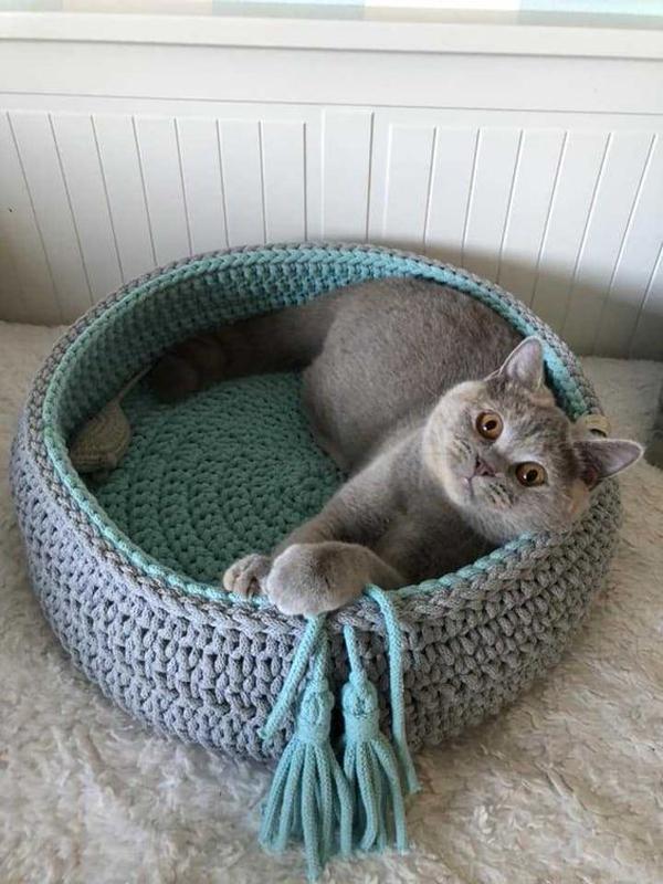 Bowl-cat-basket