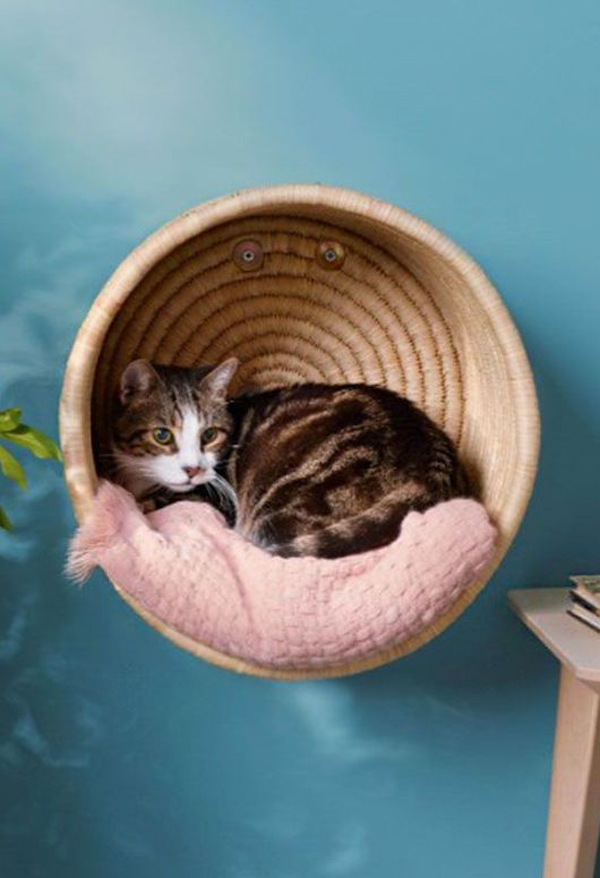 Cat-basket-on-the-wall