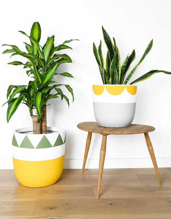 Cool-pots-for-plant-lovers