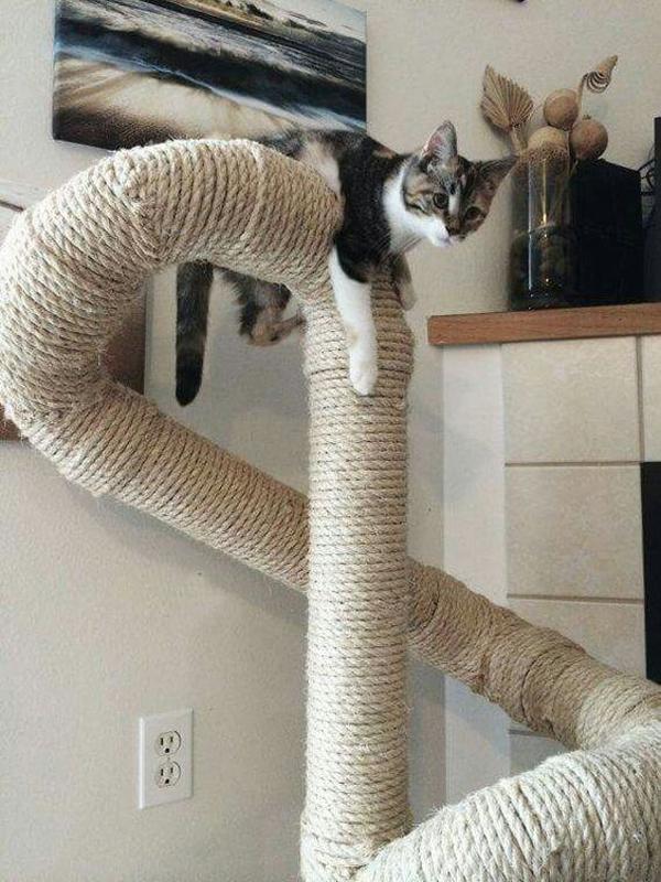 DIY-cat-toys