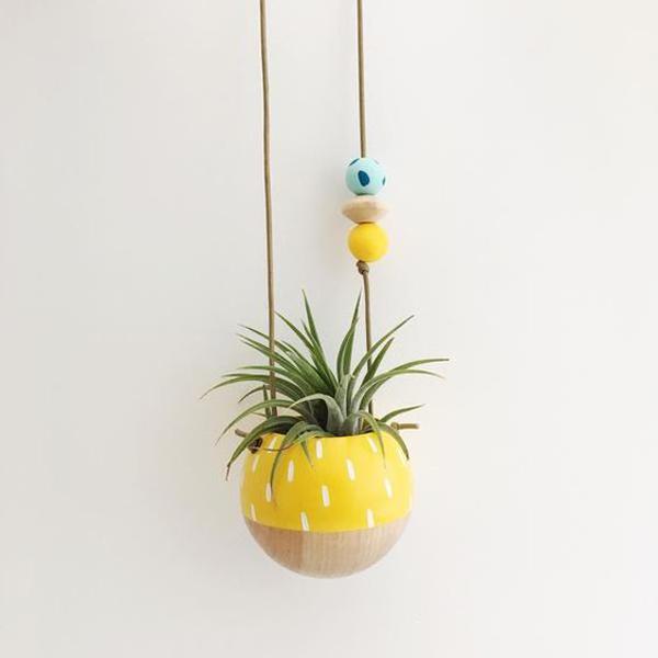 Hangin-pinnaple-planter