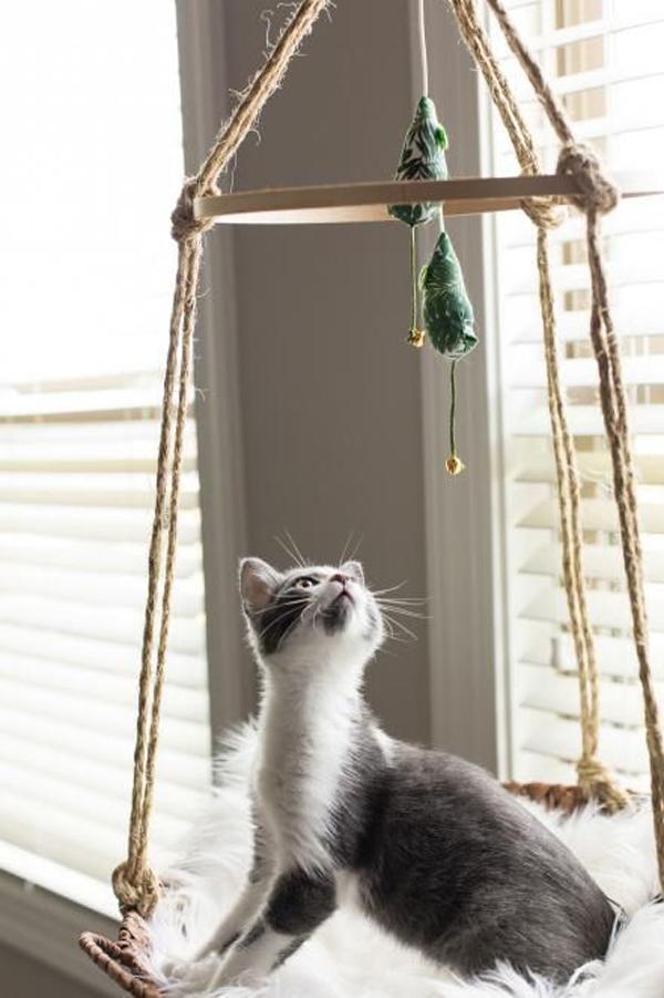 Hanging-cat-toys