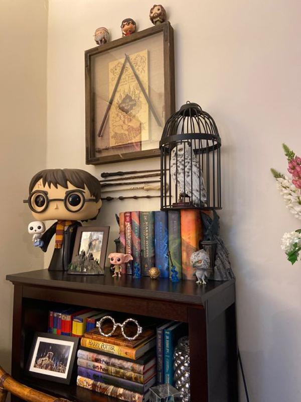 Harry-Potter-shelf