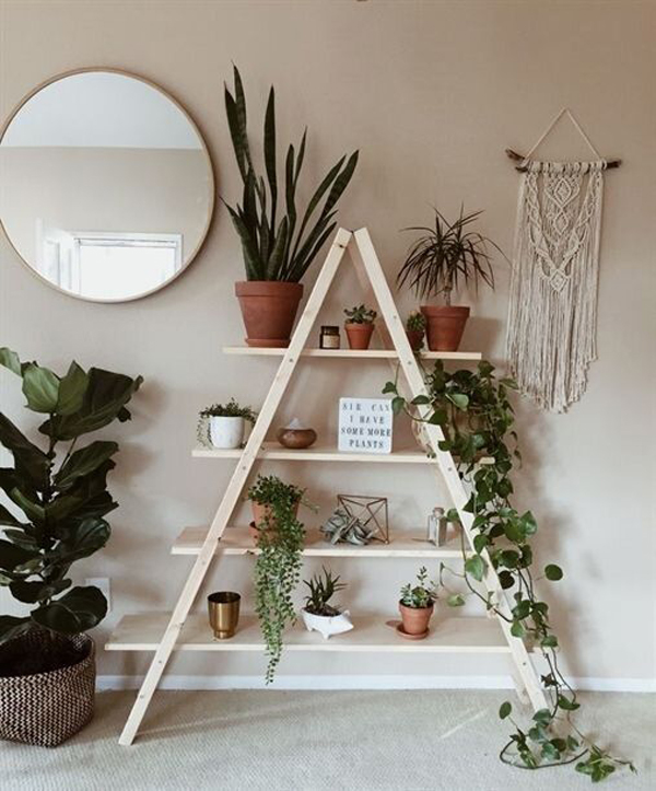 Indie-ladder-shelf