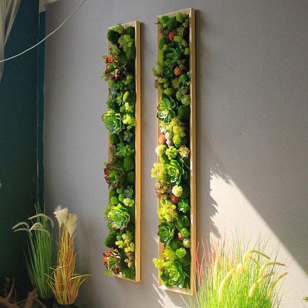 Indoor-green-plants