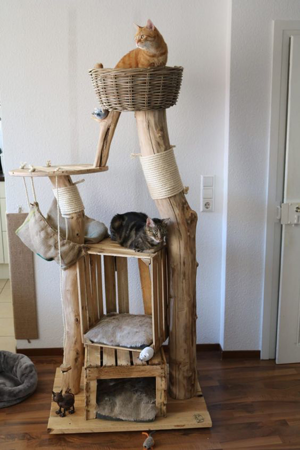 Natural-wood-trees-for-cats