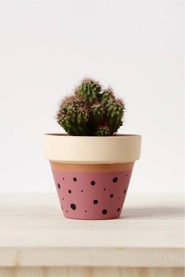Painted-flower-pots