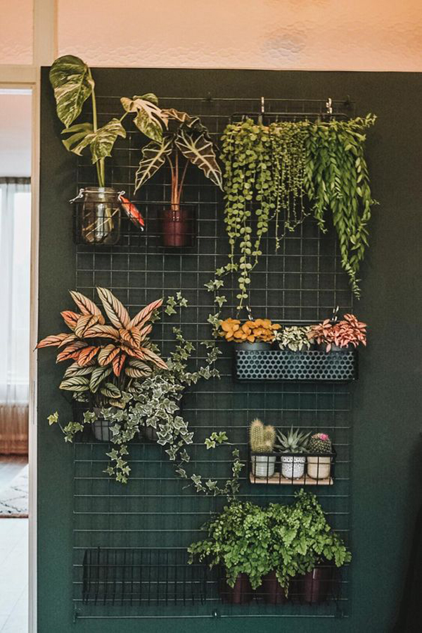 Plant-wall-ideas
