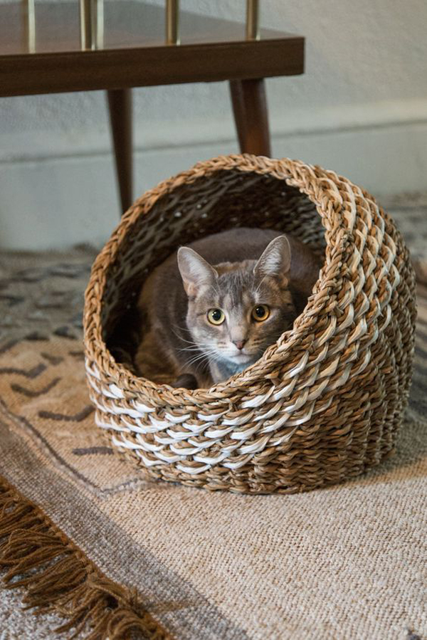 Rattan-cat-basket