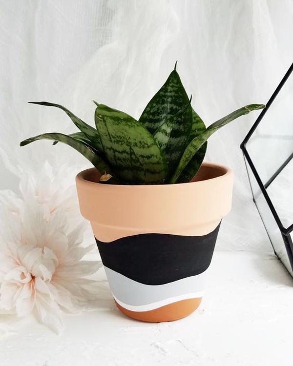 Terra-cotta-planter-pots