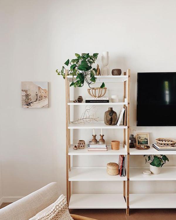 Vertical-ladder-shelf