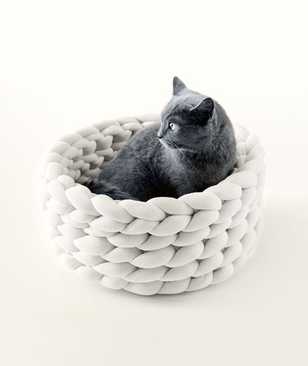 White-cat-bed