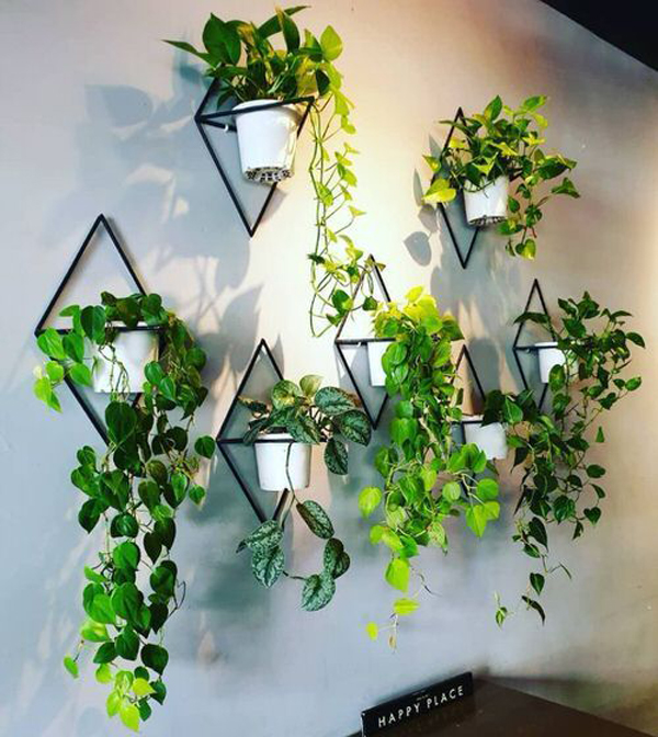 Balcony-planter-wall-with-natural-light