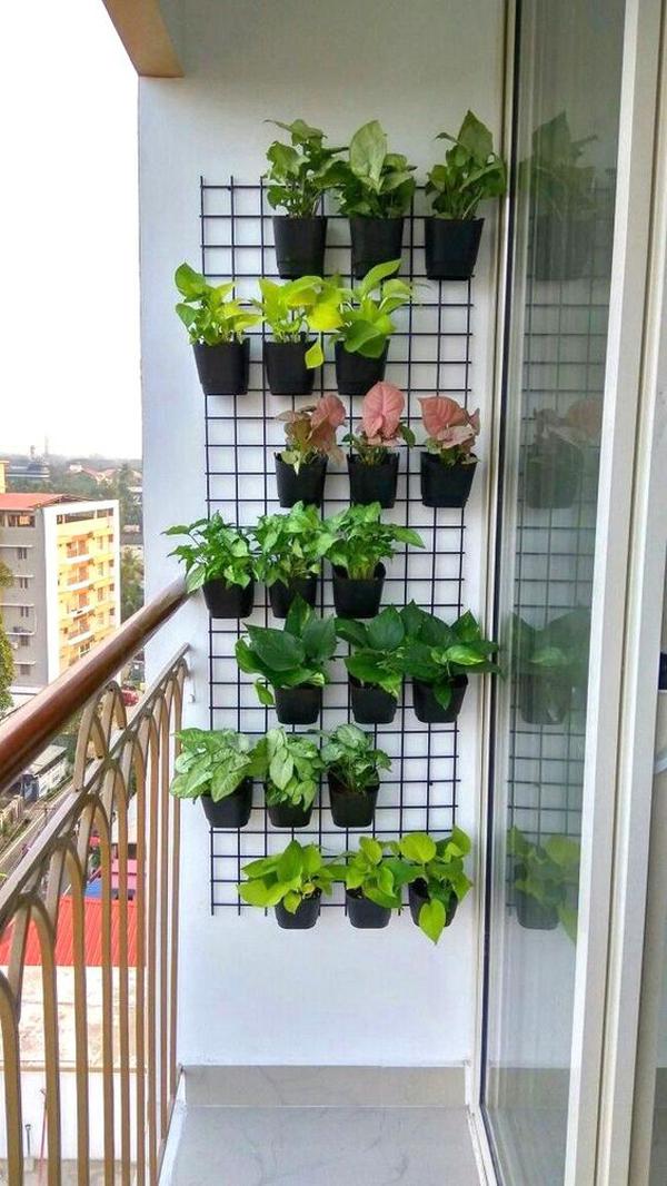 Balcony-vertical-garden-walls