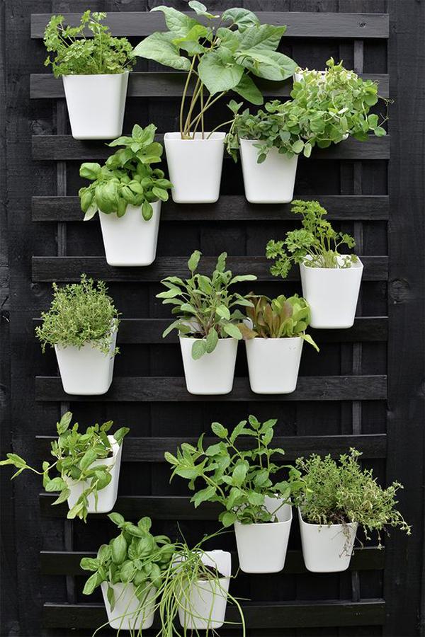 Balcony-vertical-garden-with-black-theme