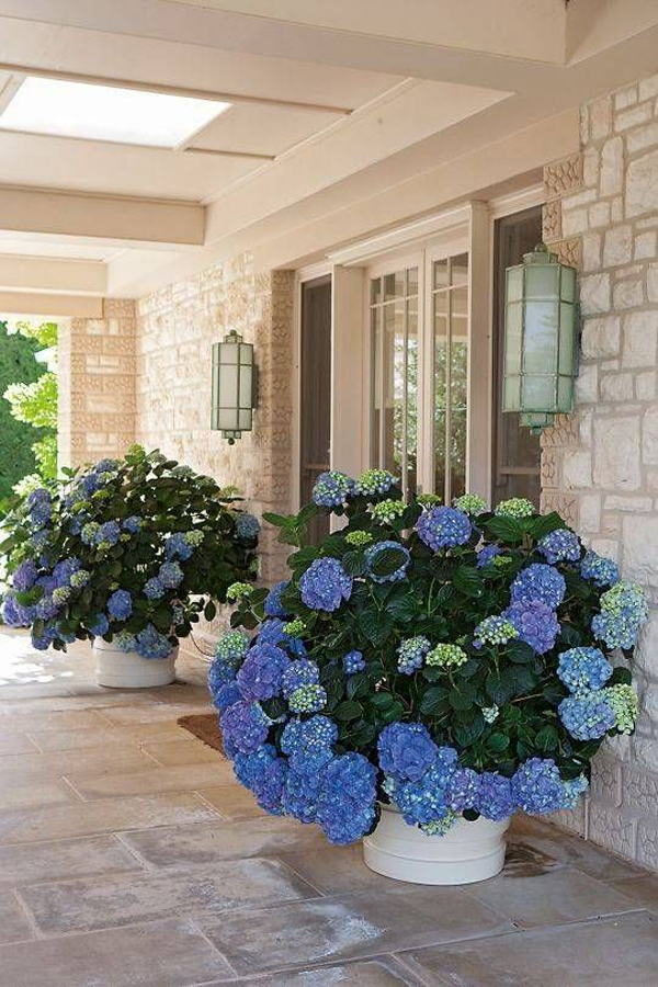 Beautiful-front-porch