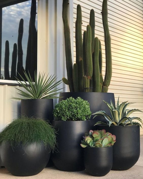 Large-outdoor-planter