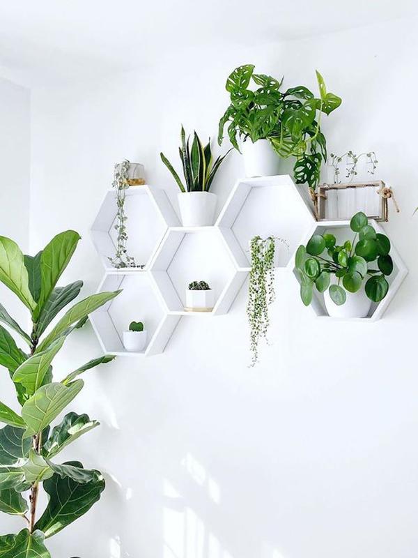 White-theme-for-balcony-vertical-garden-design