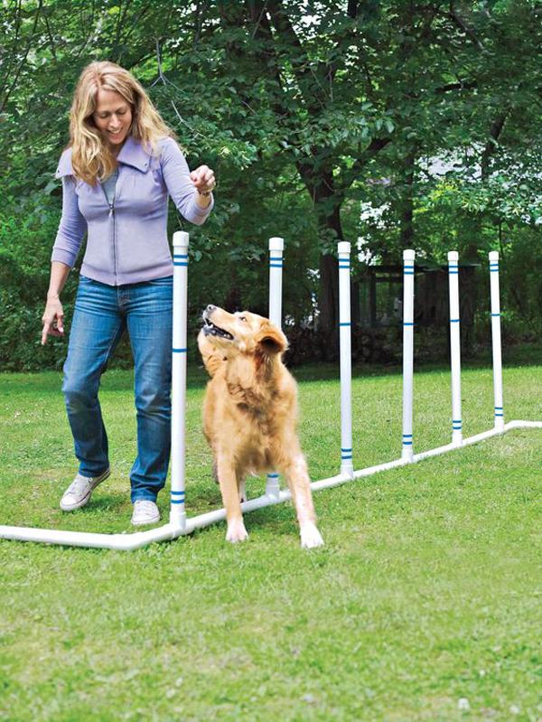 DIY-dog-agility-course
