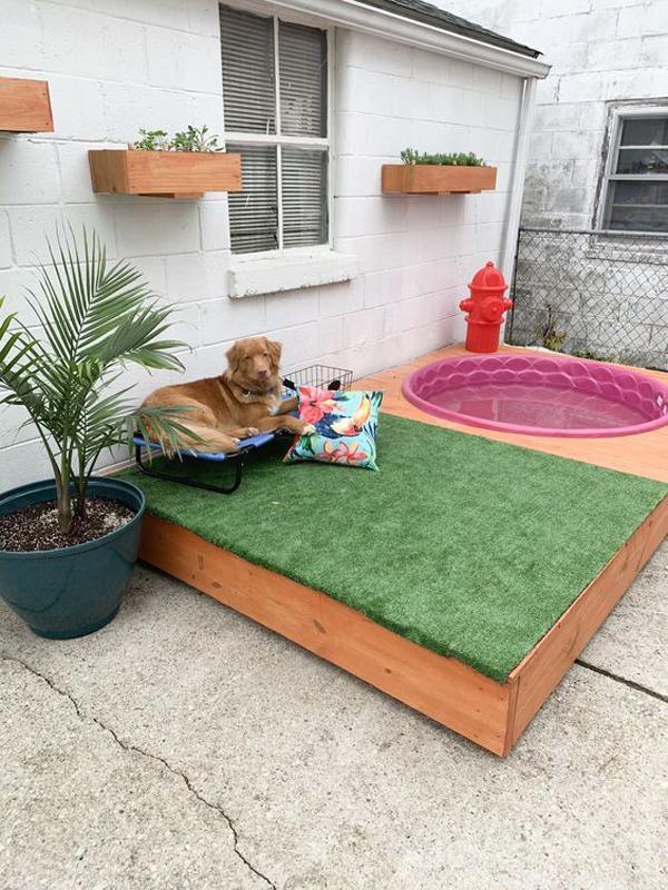 DIY-dog-pool-ideas