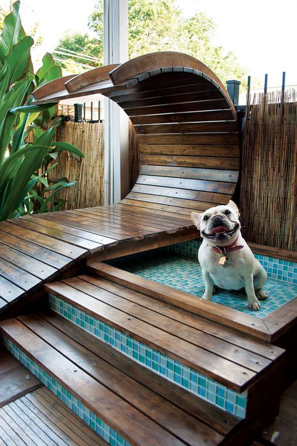 Dog-areas-in-pool
