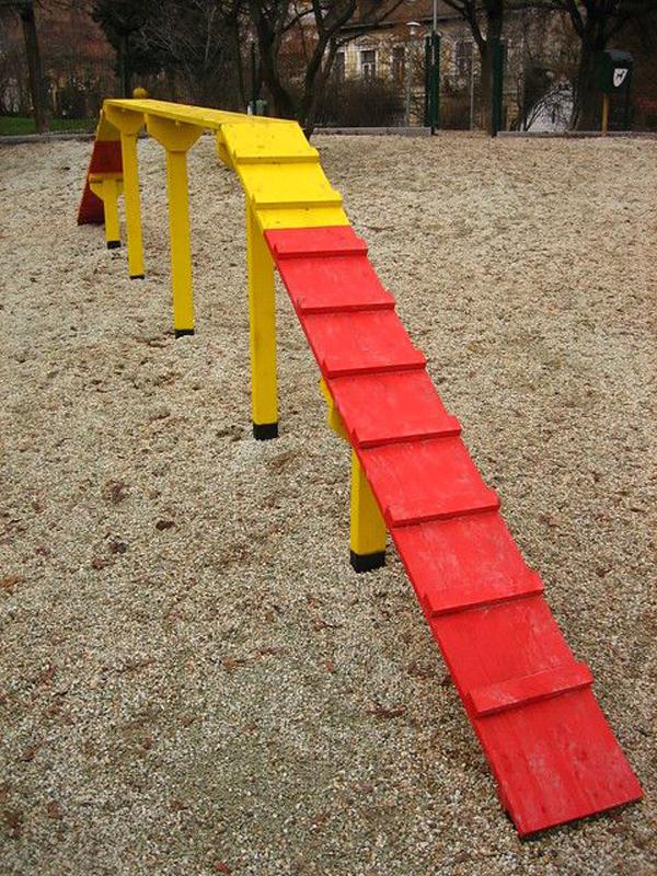Dog's-playground-area