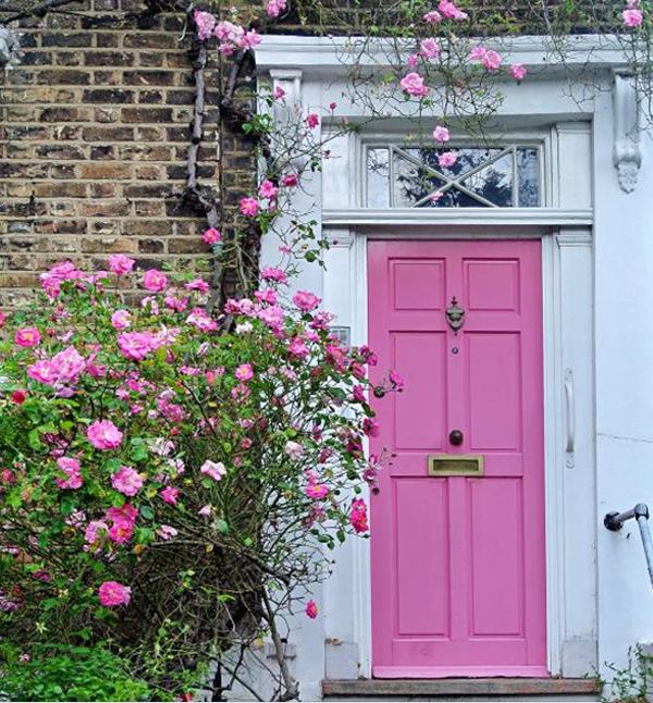 Pink-front-door-and-plants-decoration