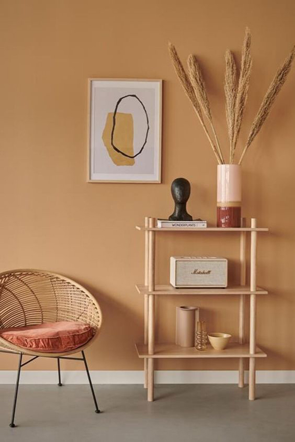 Light-brown-color-for-your-bedroom
