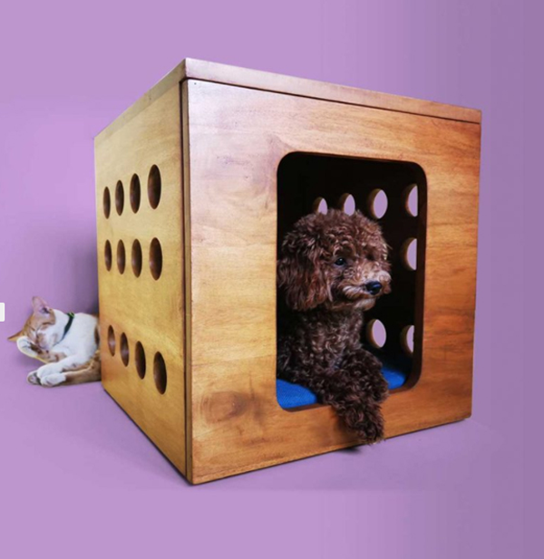 Furniture-for-dogs