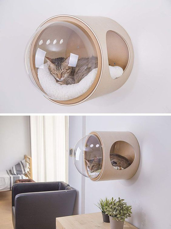 A-tube-cat-bed-on-the-wall