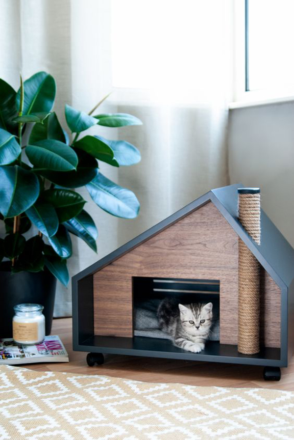 Cat-house-ideas-with-amazing-design